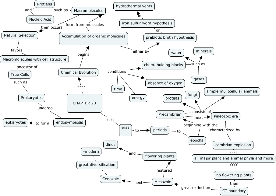 Concept Map Of Macromolecules.Chapter 20 Concept Map