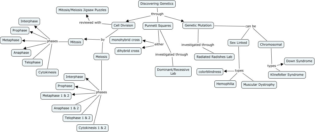 Mutation Concept Map.New Discovering Genetics