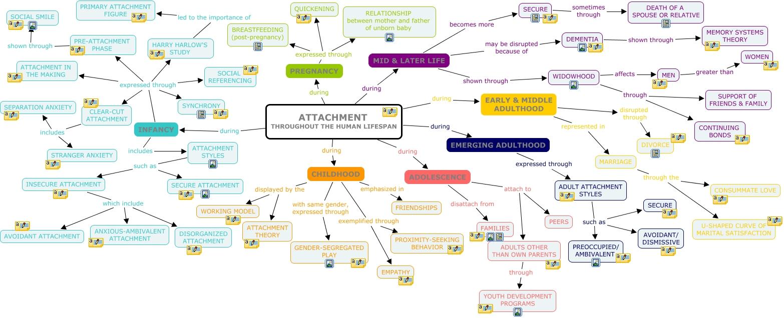 Megan Jongekrijg-CMAP - Attachment Throughout the Human Life