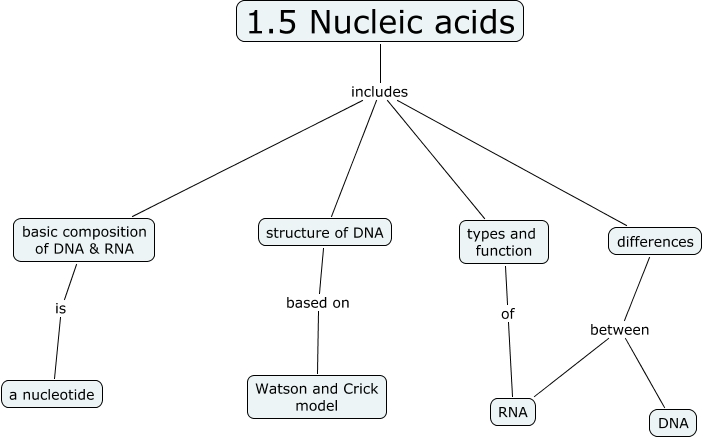 nucleic acid syllabus   properties of water