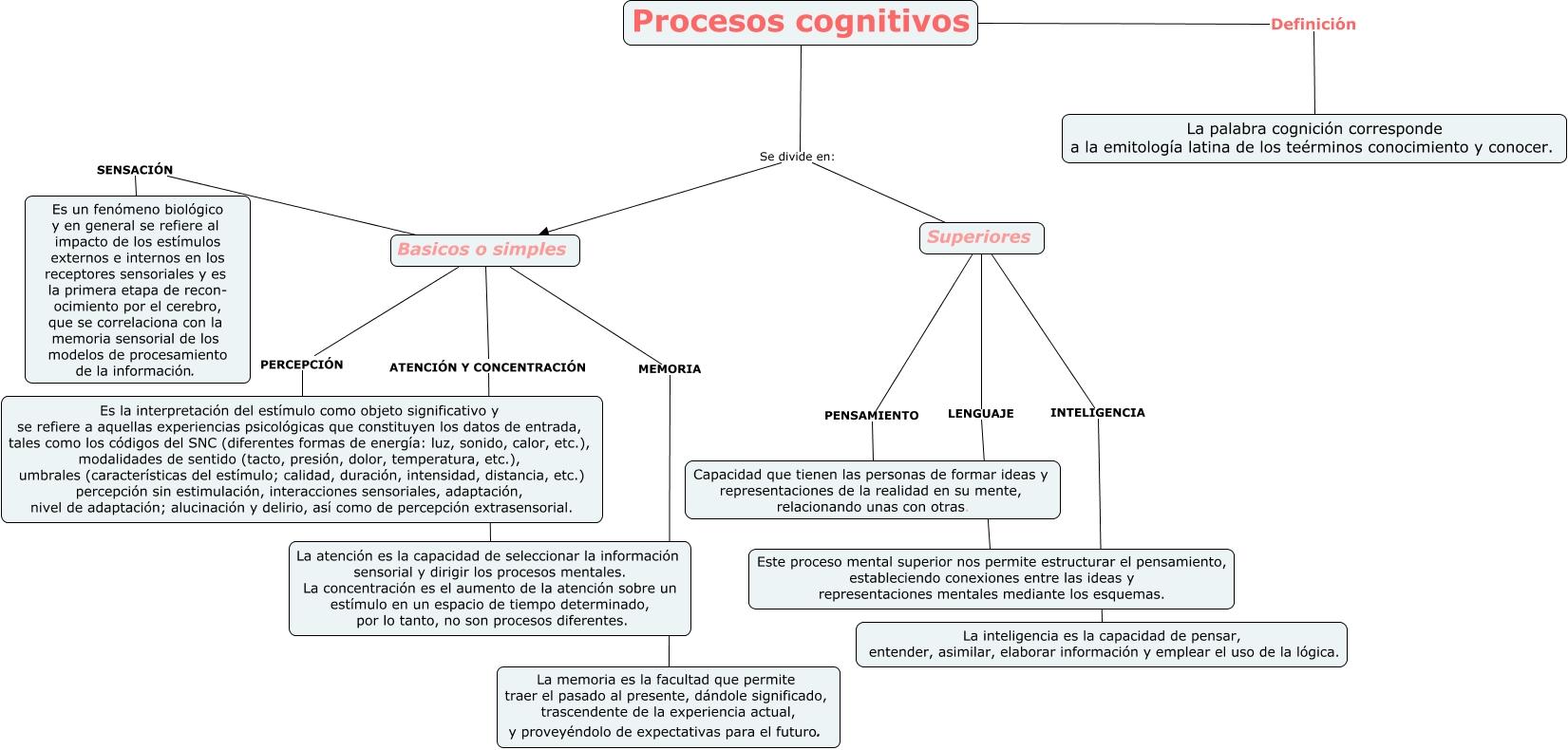 PROCESOS COGNITIVOS - DIVISION DE LOS PROCESOS COGNITIVOS