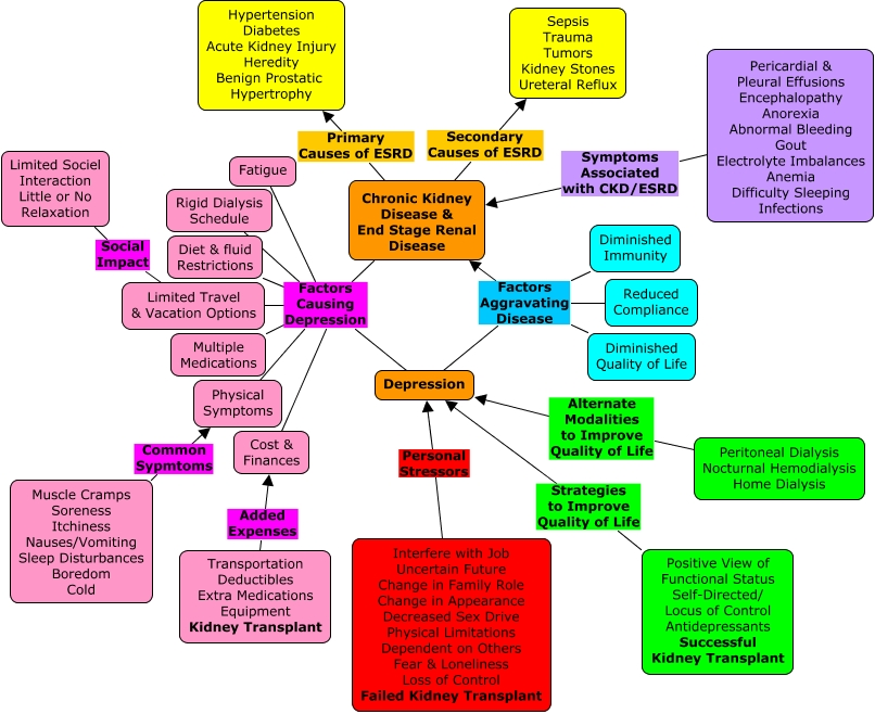 Renal Failure Concept Map.Depression In End Stage Renal Disease